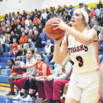 Tigers fall in district final