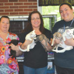 PAWS hosts Kitty Shower