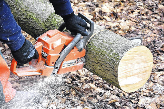 The Ohio Forestry Association will hold a four-hour chainsaw safety course on June 3 just outside Urbana.