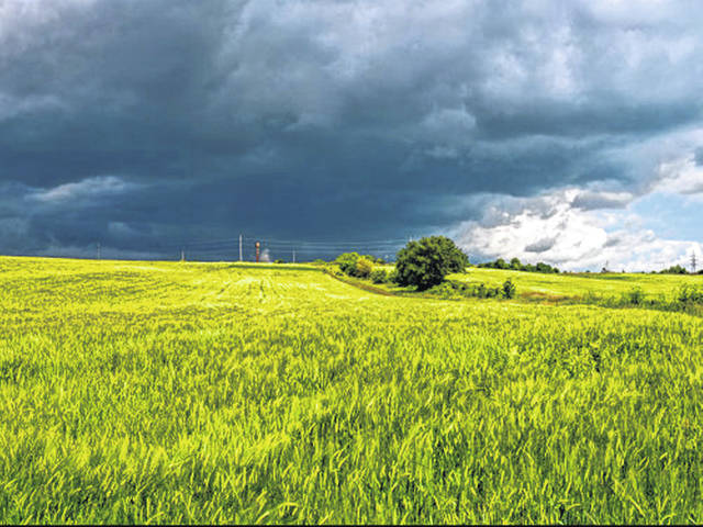 The Climate Smart conference will address steps farmers can take to adapt to the wetter weather predicted.