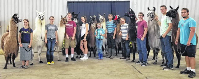 Los Llameros de St. Paris 4-H Club members at the Ohio State Fair include, from left, Leah Lusk, Lora Current, Kyle Boyd, Kalila Lightle, Colton Randall, Jonathan Chipps, Gabriel Lusk, Ben Hillman, Jeremiah Chipps and Johnathan Reed.