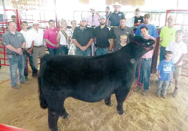 Andrew Lewis's Champion Cattleman's steer was purchased by a syndicate for $1,650 at the Champaign County Jr. Fair Market Steer Sale on Friday.