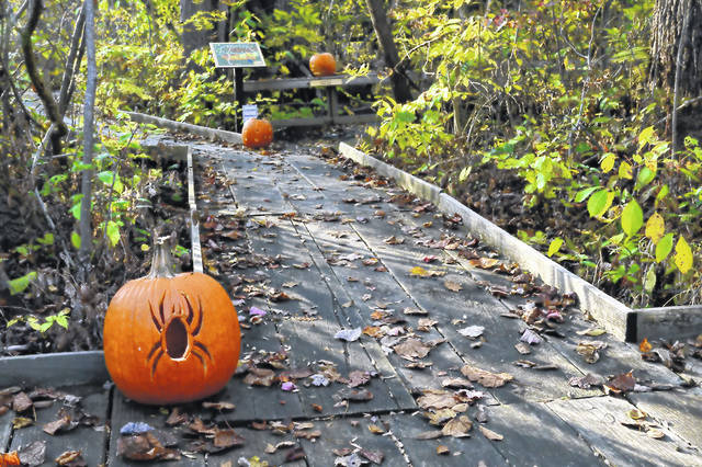Boo in the Bog visitors will encounter fun and nature-themed stations as they walk along the Cedar Bog boardwalk.