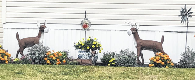 These decorative lawn deer are shown sporting medical masks at a local home. In the human world, Ohio Gov. Mike DeWine has ordered facial masks to be worn in public throughout the state — not just in high alert counties.