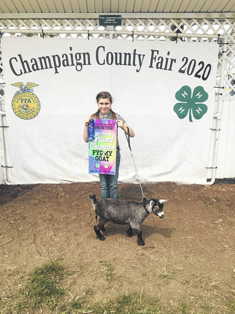 Sophie Rogers, Grand Champion Wether Pygmy