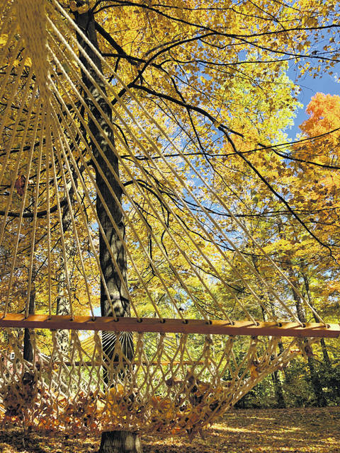 Fall colors in Champaign County have peaked, but some trees are still holding colorful leaves in late October.
