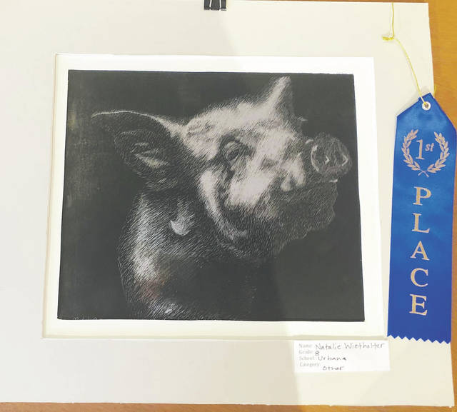 The Champaign County Arts Council recently held a competition for local high school and middle school artists, and these were the winning entries.