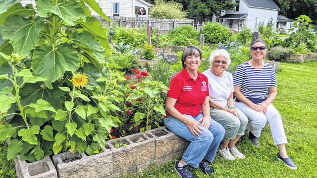 The OSU Extension Master Gardener Volunteers have put many hours into the Community Gardens on Market Street this year and they are looking fabulous. The gardens provide a low-cost option for residents to grow fresh, organic fruits, vegetables and flowers. Pictured left to right are Marsha Hess, Paddy Barr and Jeanette Enyart.