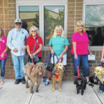 Support for pet therapy
