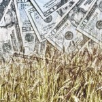 Farm management school teaches small, beginning producers farm finances