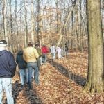 Controlled deer hunt will close Sears Woods on Saturday