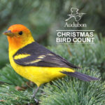 Briefs: Audubon Christmas Bird Count coming up