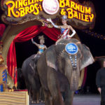Russ Kent: I'm not applauding circus' closure