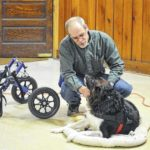 Learn about special needs pets at Galion library program