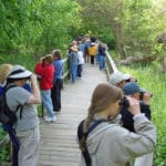 Program at Magee Marsh, near Oak Harbor, for beginning birders