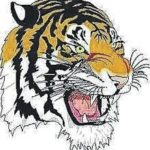 Tigers and Redmen wrestlers lock up in Galion