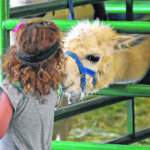 Gallery: A look back at 2017 Crawford County Fair. Photos by Erin Miller, Don Tudor