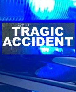 Mansfield man dead after tree-cutting accident