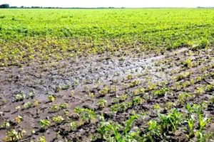 Bob Latta appeals for federal disaster relief due to wet Ohio farmland