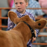 Gallery: Monday, Tuesday at the Crawford County Fair; Photos by Don Tudor