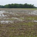 Application process to get money for damaged crop land now open
