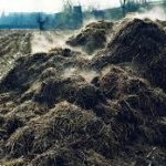 Workshop will tackle use of manure, other nutrients in agriculture