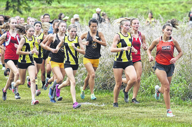 File photo  On Saturday, Northmor's cross county teams will head to Hilliard Darby High School to compete in their Division III, Central District meet.