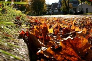 City of Galion will start picking up leaves Monday