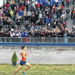 Braxton Tate runs his way to All-Ohio honors at state meet