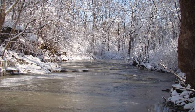 Courtesy photo When it comes to the weather and nature, February is a time of change in north central Ohio. There are plenty of events scheduled in February at the Crawford Park District that explore that time of transition.