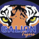 Wrestling season ends for three Tigers