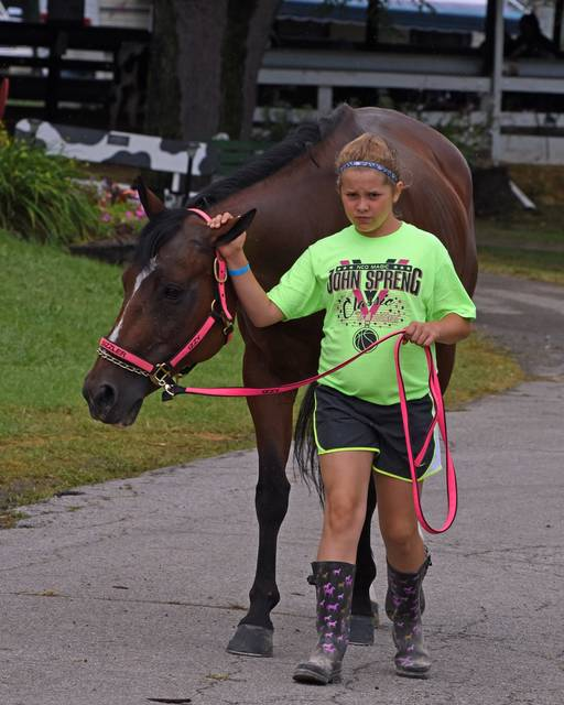 Photo by Don Tudor Crawford County officials announced Wednesday that this year's Crawford County Fair in Bucyrus will take place. The dates are July 20-25. This photo was taken during the 2017 fair.