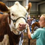 Plans approved for 4-day Junior Fair in Morrow County