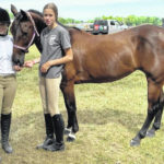 Horsing around an all-day job for Olivia, Cecilia Chase at the Crawford County Fair