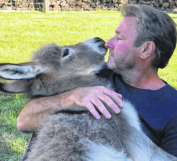 Dean Fagan singing to Ivy, a three-week-old donkey. The video went viral and drew national attention.