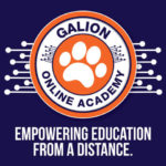 Galion City Schools will launch online academy with the start of the new school year.