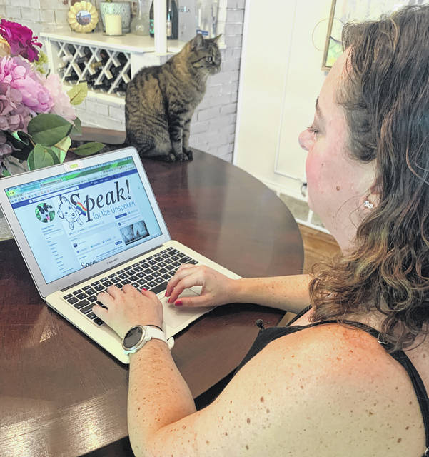 When the negativity of social media posts and comment sections becomes overwhelming, Andrea Koder feels empowered by volunteering for causes she cares about, like fostering shelter animals.