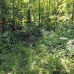 Nature preserve created in Morrow County