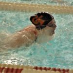 Galion swimmers qualify for district meet