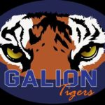 Wrestling: Galion's Landon Campbell wins sectional championship