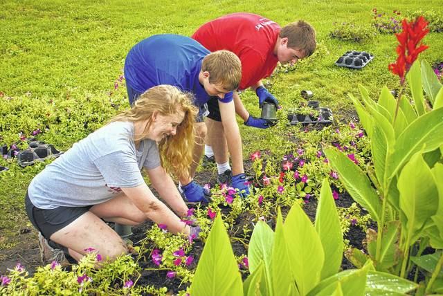 Members of several Delaware County 4-H clubs worked together Monday morning planting flowers left from the Delaware County Ohio Master Gardener Association annual plant sale held Saturday and Sunday. The flowers were placed in the planters in front of the coliseum, around the fair office and around the yard of the fair's stage. From left to right, Audrey Graham, Joshua Herron and Todd Herron work together along the perimeter of the stage filling in the spaces giving the beds a fuller look.