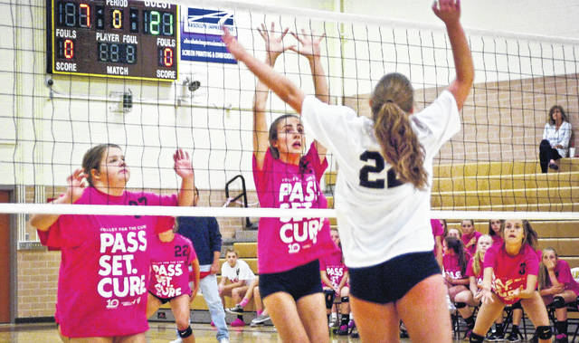 Pink shirts flooded the court Thursday as Buckeye Valley's volleyball teams hosted Volley for the Cure in the fight against breast cancer. The event is sanctioned by the OHSAA to increase awareness and raise money to fund breast cancer research. Buckeye Valley played Pleasant High School.