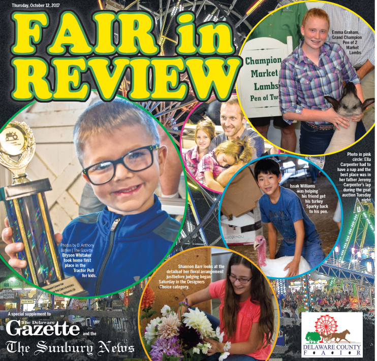 Fair in Review 2017
