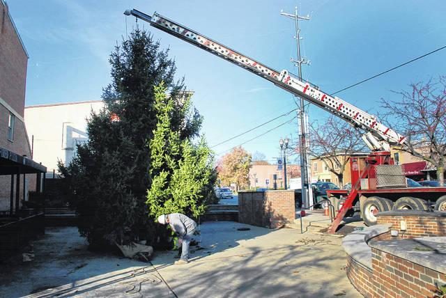 Early Monday morning, crews from the City of Delaware hoisted this year's Christmas tree into position on the southwest corner of Sandusky and William streets. Under the tree, it might look like presents were placed there, but they weren't. It's the crew securing the tree in place before releasing it from the crane's hoist. The tree-lighting ceremony is scheduled for 6:30 p.m. on Friday, Dec. 1 during Main Street Delaware's First Friday. For information about downtown Delaware holiday events, visit www.mainstreetdelaware.com.