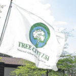 "Delaware named ""Tree City"" once more"