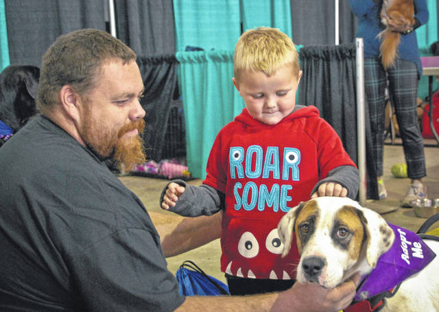 Braxton Arms, 2, couldn't pass by Cash, a rescued canine, without stopping to give him a little attention. Alan Dennis, Braxton's uncle, said if he didn't already have five Great Danes at home, he might have been tempted to adopt Cash.