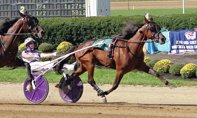 Pattis Main Man (4) and driver David Miller hold off Wittyville (2) to take the $129,706 (div.) Ohio Breeders Championship for two-year-old colt trotters Tuesday at the Delaware County Fair.
