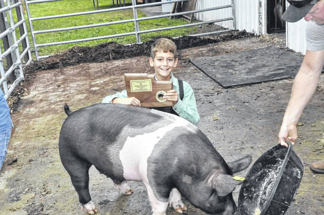 Kase Tidd shows off his award next to his newly-crowned Grand Champion Barrow at the 2018 Delaware County Fair.