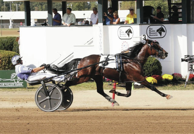 The new world champion Action Uncle and Brett Miller take the OBC freshman colt trot in 1:54.