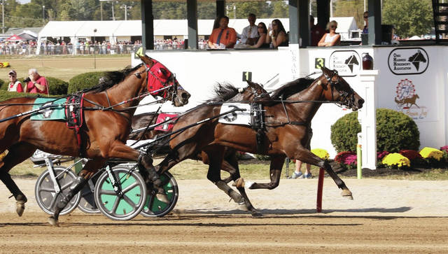 Plunge Blue Chip wins the $100,000 Ms. Versatility Trot Final Thursday afternoon at the Delaware County Fair.